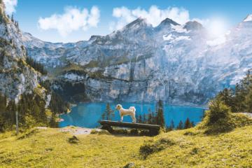 Oescheningsee - einer der schönsten Seen der Schweiz